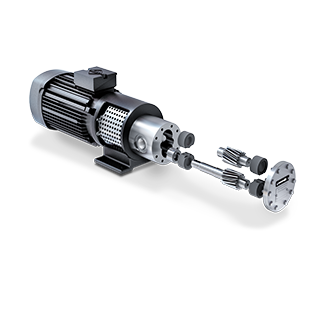 Gear pump ZR